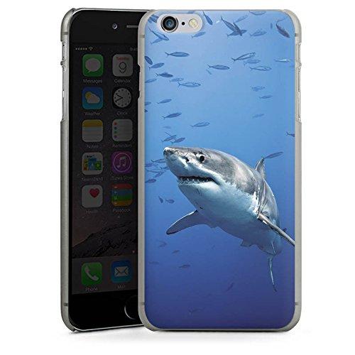Apple iPhone X Silikon Hülle Case Schutzhülle Hai Fisch Weißer Hai Hard Case anthrazit-klar
