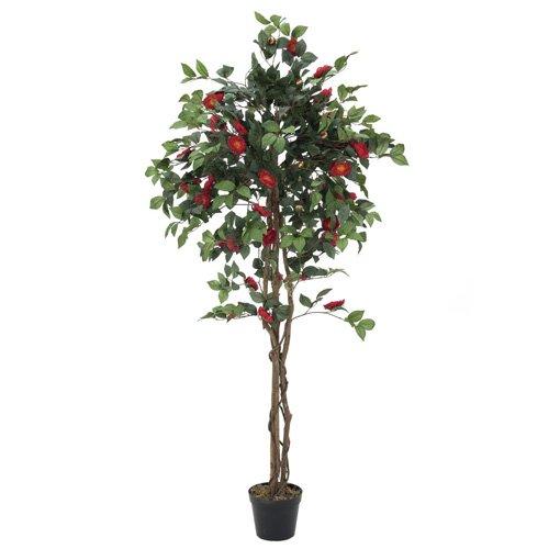 europalms-kamelienbaum-rot-mit-topf-180cm