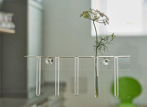 Distressed Diseño de Jarrón/colgantes/cristal/Tubo de ensayo (/Flores/Flores Jarrón/con ventosa/Flower/Glass Tube Flower Jarrón/Ventana/Flores...