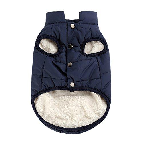 PanDaDa Winddichte Haustierhund Welpen Weste Jacke HaustierKleidung Warm Winter Mäntel Jacken Kostüme Kleider für kleinen Hund