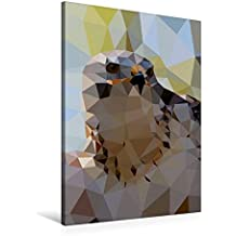 Premium Textil-Leinwand 60 cm x 90 cm hoch, Greifvogel | Wandbild, Bild auf Keilrahmen, Fertigbild auf echter Leinwand, Leinwanddruck (CALVENDO Tiere)