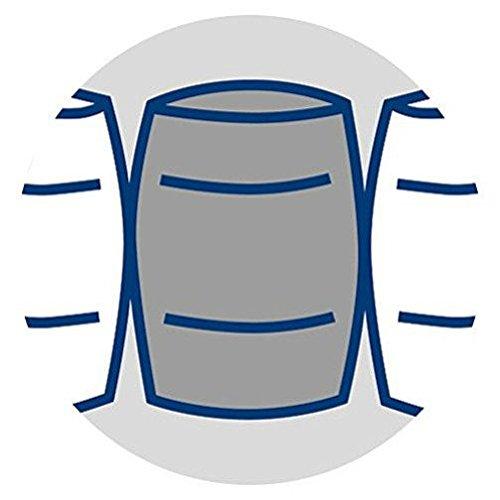 Badenia 3888360159 Bettcomfort Matratze, Irisette Lotus Tonnentaschenfederkern H3, 90x200 cm, weiß -