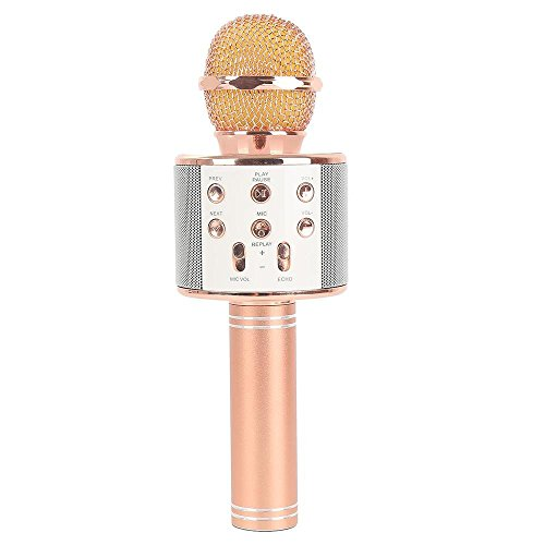 JDSenYe Mini Portable Mic Karaoke Wireless Bluetooth 4.1 Mikrofon Lautsprecher Outdoor KTV WS-858 (Rosa)