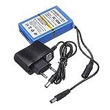 12V 3000mAh Monitor Batterie Große Kapazität Wiederaufladbarer Li-Ion Akku LED Lampe Notstrom Standby Stromquelle Kaemma(Color:Blue)
