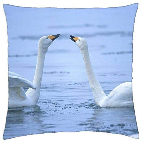 - Throw Pillow Cover Case 18 X 18 Inch ()