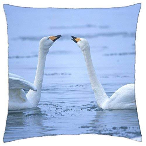 Jxrodekz Swan Song. - Throw Pillow Cover Case 18 X 18 Inch