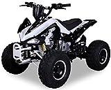 Kinder Quad S-14 125 cc Motor Miniquad 125 ccm Speedy