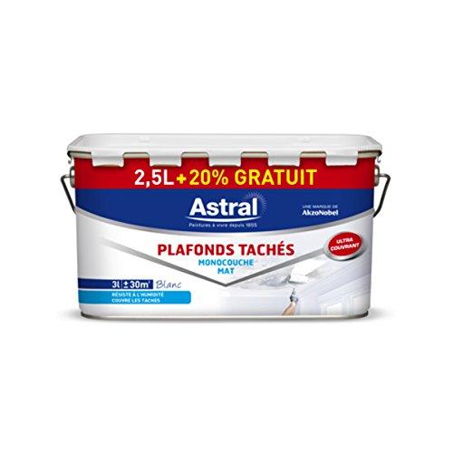 astral-5211999-peinture-pour-plafonds-monocouche-25-l-20-mat