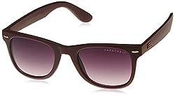 Farenheit Wayfarer Sunglasses (Brown) (FA-999-C5)