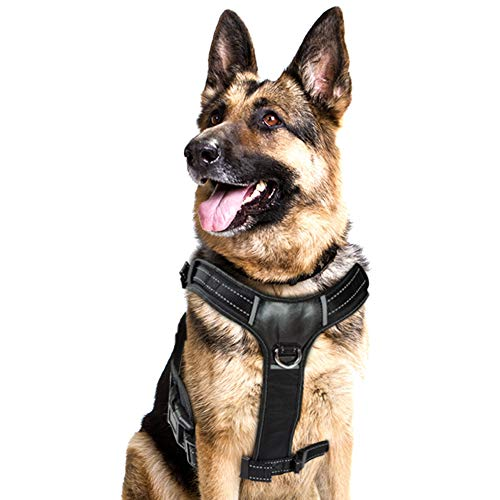 BELISY Gepolstertes Brustgeschirr I Dog Harness I leicht verstellbar I S, M, L
