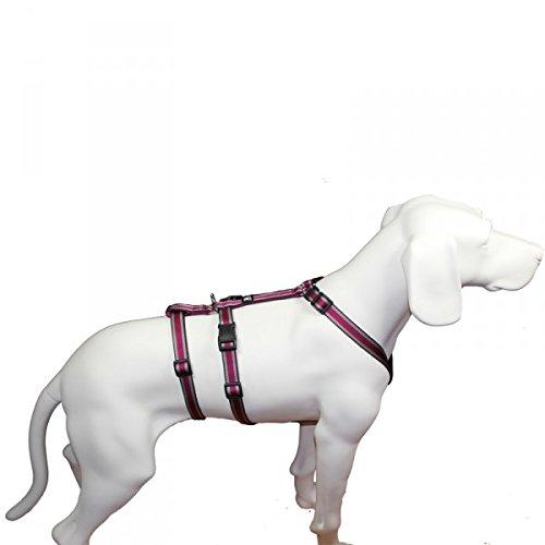Das Original - NoExit Hundegeschirr  - 100 % ausbruchsicher für Angsthunde, Panikgeschirr, pflaume...