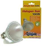Lucky Reptile HS-100 Halogen Sun, 100 Watt