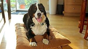 furhaven Pet Lit pour chien Pet touffeté Taie d'oreiller réversible Terry et daim pour caisses ou apporter
