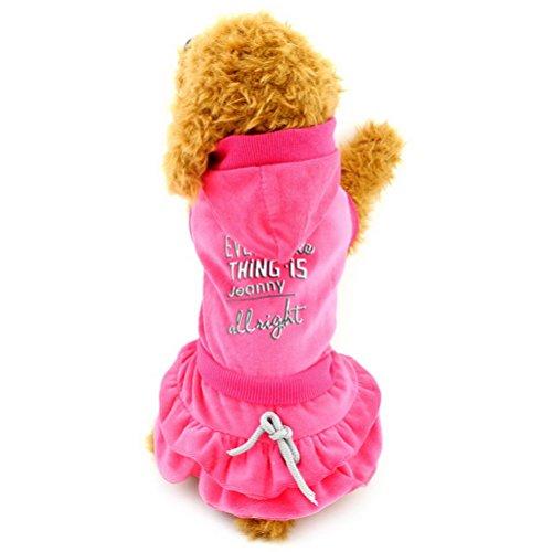 zunea Kleiner Hund Kleidung für weiblich Plissee abgestuftes Hund Kleid Muster Druck Hoodies Outfits (Outfits Festival Besten)