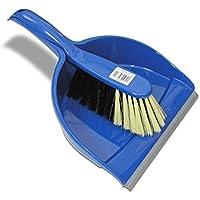 Nölle profesional–Escoba y recogedor con escoba Ross mezcla de pelo azul