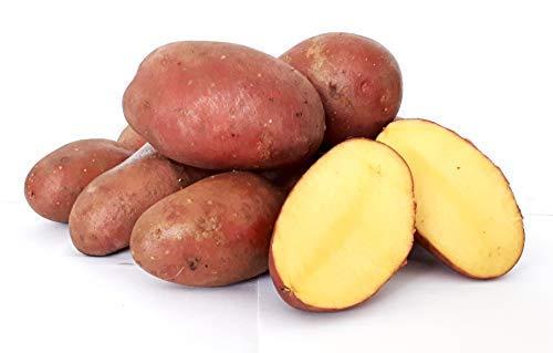 Kartoffeln Desiree vorwiegend festkochend ( halbmehlig ) rote Kartoffel 10 Kg