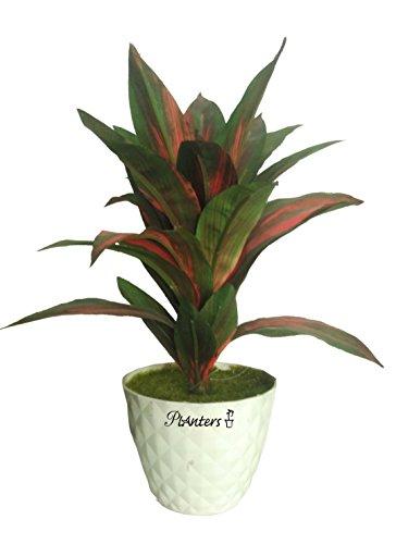Planters Artificial Plants For Home Decor | Artificial Plants With Pots |...