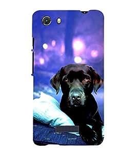 Dog 3D Hard Polycarbonate Designer Back Case Cover for Micromax Unite 3 Q372 :: Micromax Q372 Unite 3