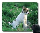 Gaming-Mauspad, Bunte Hunde Baby Hund, Präzisionsnaht, langlebige Mauspad