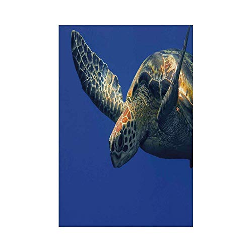 Liumiang Eco-Friendly Manual Custom Garden Flag Demonstration Flag Game Flag,Turtle,Close Up Photo of Green Turtle at Sipadan Borneo Malaysia Cute Animal Under The Sea,Blue Yellowarden d¨¦COR -