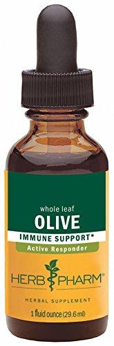 Olive Leaf entier, 1 fl oz (30 ml) - Herb Pharm