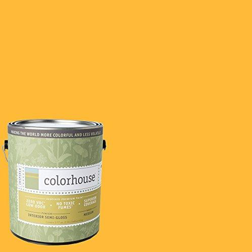 yolo-colorhouse-semi-gloss-interior-paint-aspire-06-gallon