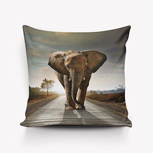 Jhonangel Funda de Almohada para Elefante Funda de cojín Funda Decorativa para Oficina en casa 18x18 Pulgadas
