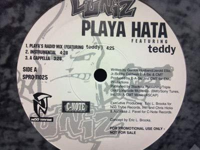 Playa Hata / Pimps, Playas & Hustlas