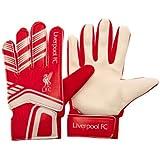 100% Official Premier League Football Club Goalkeeper Goalie Gloves For Kids Children Teens