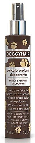 Doggyhair Deodorant Duft für Hunde
