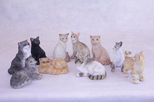 10er Set Katzen Deko Figur Kätzchen Hauskatze Perser Siam Angora Bengal Maincoon -
