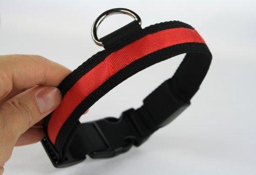 """LED Halsband Hundehalsband """"Zandoo"""" Leuchthalsband für Hunde in der Farbe rot Größe S (35-40 cm) NEU von der Marke PRECORN - 5"""