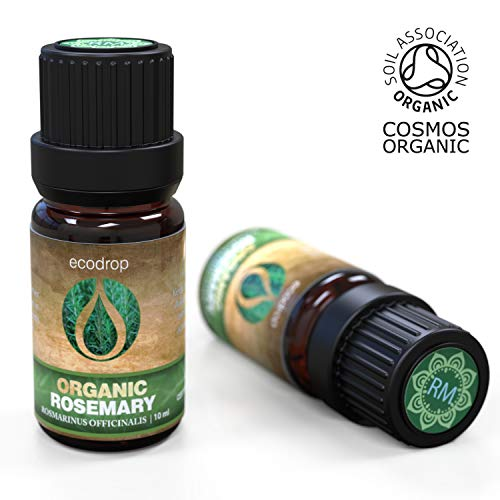 Rosmarinus officinalis ätherisches Öl, 100% rein, beste therapeutische Qualität für Aromatherapie, Massage, Diffusoren und Bad - 10 ml, inklusive E-Book (Rosmarinus officinalis)
