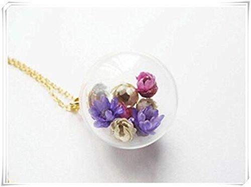 sieben blume glück kugel glas globus charme kette kette getrocknet echte lila sammlung daisy daisy glaskugel halskette (Botanische Sammlung)