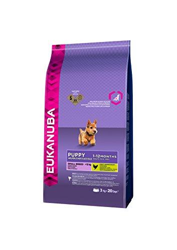 Eukanuba Puppy Small Breed Trockenfutter (für Welpen kleiner Hunderassen, Premiumnahrung mit Huhn), 3 kg Beutel - 3