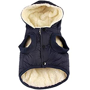JoyDaog(Warm Fleece+Cotton Lining Dog Hoodie in Winter,Small Dog Jacket Puppy Coats with Hooded 22
