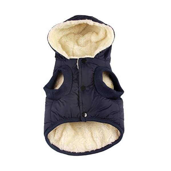 JoyDaog(Warm Fleece+Cotton Lining Dog Hoodie in Winter,Small Dog Jacket Puppy Coats with Hooded 1