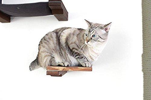 Catastrophicreations il gatto mod–gatto in legno passo mensola