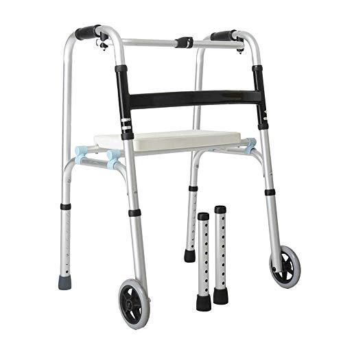 FFLSDR Andador Anciano Discapacitado