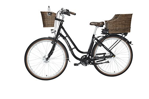 FISCHER E-Bike RETRO - 2