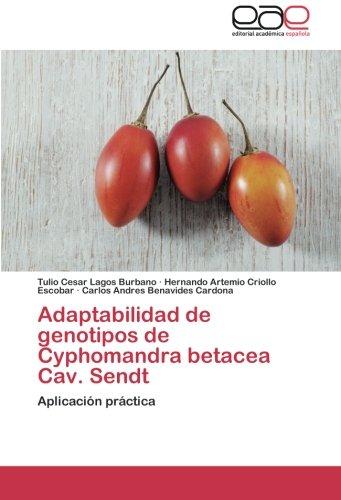 Adaptabilidad de Genotipos de Cyphomandra Betacea Cav. Sendt por Lagos Burbano Tulio Cesar