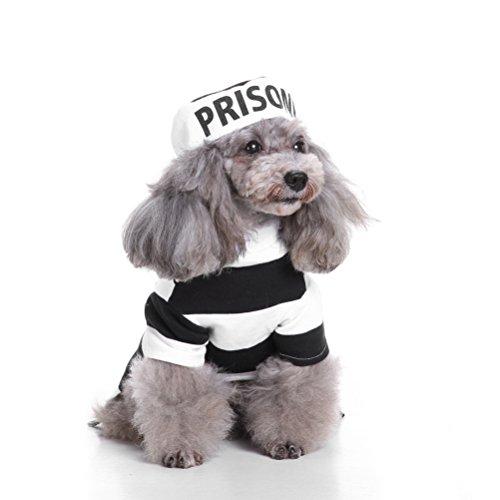 Gefangener Kostüm Hunde - zunea Halloween kleine Hunde Katze Gefangene Kostüm mit Hut, PET Wachhund, Hund Party Cosplay Kostüm Puppy Fancy Coat Jacke Kleidung Bekleidung