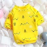 PONNMQ Süße Haustier-Hundekleidung für kleine Hunde Shih Tzu Yorkshire Hoodies Sweatshirt Weiche Hündchen-Katzen-Kostüm-Kleidung, gelbe Zeder, XS-10
