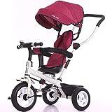 SSRS Baby Dreirad,Kinderwagen Dreirad ab 1 Jahr Mit Lenkbarer Schubstange, FlüSterleise Gummireifen Und Sonnendach,1-5 Jahre Geeignet Belastbarkeit bis 30 kg, red