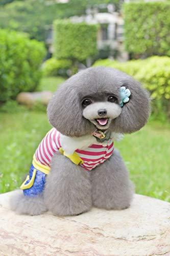 QINCH Home Haustier Kleidung Hund Kleidung Haustier Winterkleidung Teddy Hund Kostüme Huhn gestreiften vierbeinigen Baumwollmantel (Color : Red, Size : L)