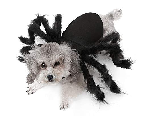 Jiaxingo Halloween Pet Kostüm Spider Pup Kostüm Pet Cat Spider Harness Kleidung Katzen und kleine Hunde Halloween Party Dress Up Zubehör,1pc (Welpen Spider Kostüm)