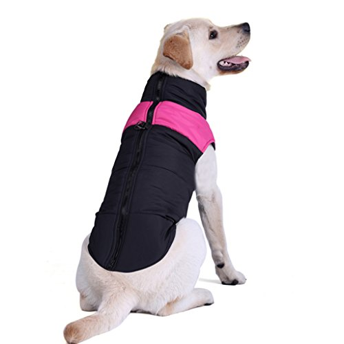 Größer Hundemantel wasserdicht Winterjacke Hundebekleidung Hundejacke Wintermantel Regenmantel - 2