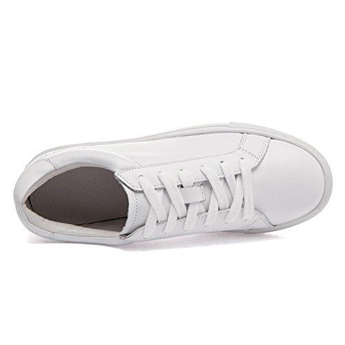 WZG Weißes Leder Spitze Schuhe Frauenschuhe Frühling und Sommer neue koreanische Version der beiläufigen Schuhe flache Schuhe White