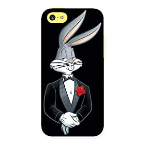 Neo World Stylish Bunny Back Case Cover for Apple iPhone 5C