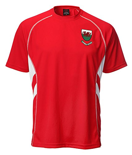 New Mens Wales Welsh Cymru Football Sportsware T Shirt Top  UK 2XLarge  42-44